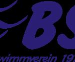 BSV WEB-Seite war down