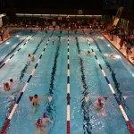 Protokoll der Vereinsmeisterschaften ist online