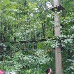 Ausflug in den Kletterwald